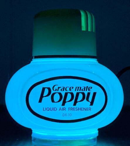Poppy with light